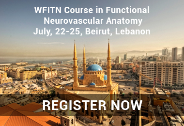WFITN Course in Functional Neurovascular Anatomy<br />